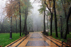 雾大道,公园 免版税库存照片