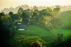 雾小山日落的风景房子 图库摄影
