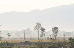 雾房子横向早晨剪影结构树 免版税库存照片