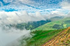 雾推进在比利牛斯的草甸 免版税库存照片