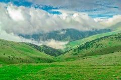 雾推进在比利牛斯的草甸 免版税库存图片