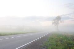 雾方式 免版税库存照片