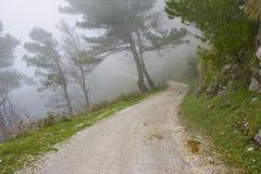 雾横向山 免版税库存图片