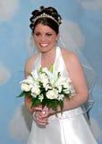 雾浊的新娘纵向 库存照片