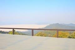 雾海与森林的作为前景 库存图片