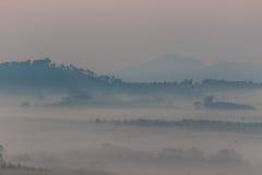 雾海  图库摄影