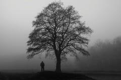 雾的人 免版税库存照片