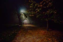 雾的例证在公园在晚上,软的焦点 免版税库存图片