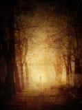 雾的公园。哥特式场面。 免版税图库摄影