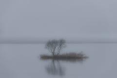 雾的小海岛 库存照片