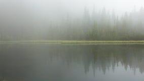 雾的湖 免版税图库摄影