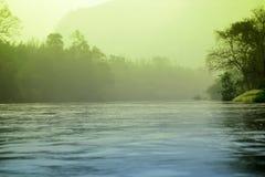 雾神秘的河和森林风景 免版税库存照片