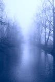 雾结构树冬天 库存图片