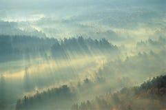 雾绿色山 免版税库存照片