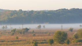 雾美好的风景风景在村庄平原的 以秋天雾为背景的输电线 股票视频