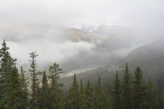 雾被覆盖的山-贾斯珀国家公园,加拿大 库存图片