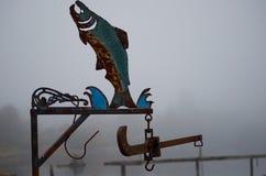 雾被风化的钢三文鱼 免版税库存图片