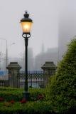 雾闪亮指示街道 免版税库存图片