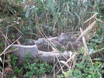 需要修理的灌溉运河 免版税库存图片