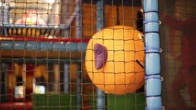 震动与微笑的儿童女孩滑稽的球 使用在儿童的游戏室的小美丽的女孩 股票视频