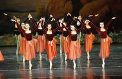 震动handshandle舞蹈芭蕾天鹅湖 免版税库存图片