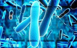 霍乱细菌 向量例证