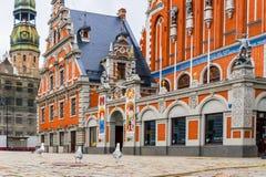 霍尔有鸥议院公共领域博物馆的镇中心在里加 免版税库存图片