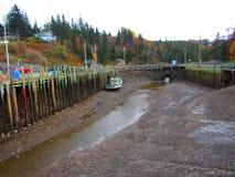 霍尔` s港口新斯科舍处于低潮中 免版税库存照片