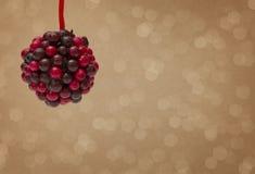 霍莉莓果球 库存照片