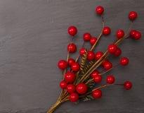 霍莉莓果 免版税库存图片