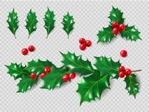 霍莉集合 现实叶子,分支,红色莓果 圣诞节接近的装饰新的年 3d您的布局的例证 库存照片