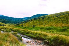 霍顿生物多样性抱怨国家公园,斯里兰卡 免版税库存图片