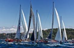 霍巴特种族乘快艇的悉尼 库存图片