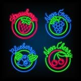 霓虹灯广告 套另外明亮的牌用果子 皇族释放例证