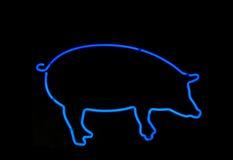 霓虹猪形状的符号 免版税库存图片