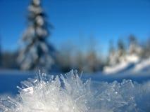 霜冰 库存照片