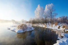 霜和薄雾 免版税图库摄影