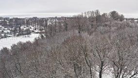 霜森林,多雪的小山奇妙冬天风景  由云杉的树枝的空中飞行从白色的有薄雾的森林 股票视频