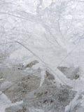 霜玻璃 库存照片