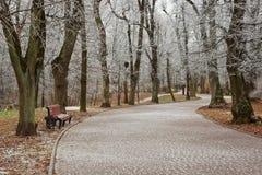 霜的公园 库存图片