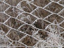 结霜的铁丝网 免版税库存图片