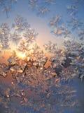 霜自然星期日纹理 图库摄影