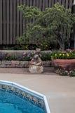 露台大农场主用五颜六色的小的花填装了由游泳池 库存图片