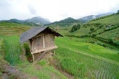 露台的小屋和的绿色 免版税库存照片