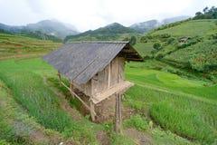 露台的小屋和的绿色 免版税库存图片