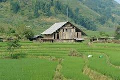 露台的小屋和的绿色 免版税图库摄影