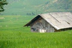 露台的小屋和的绿色 图库摄影