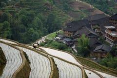 露台的米在大寨村庄调遣,广西,中国 免版税图库摄影