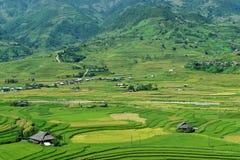 露台的米领域和H ` Mong种族人民的传统房子 库存图片