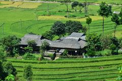 露台的米领域和H ` Mong种族人民的传统房子 免版税图库摄影